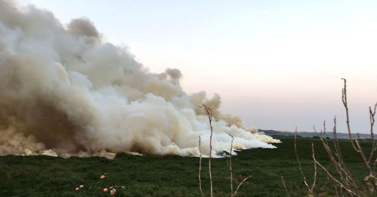 Watch: Bengaluru's Bellandur lake catches fire again because of illegal debris dumping