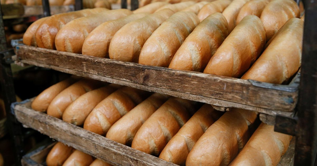 We've calculated the environmental cost of a loaf of bread. Here's what you can do about it