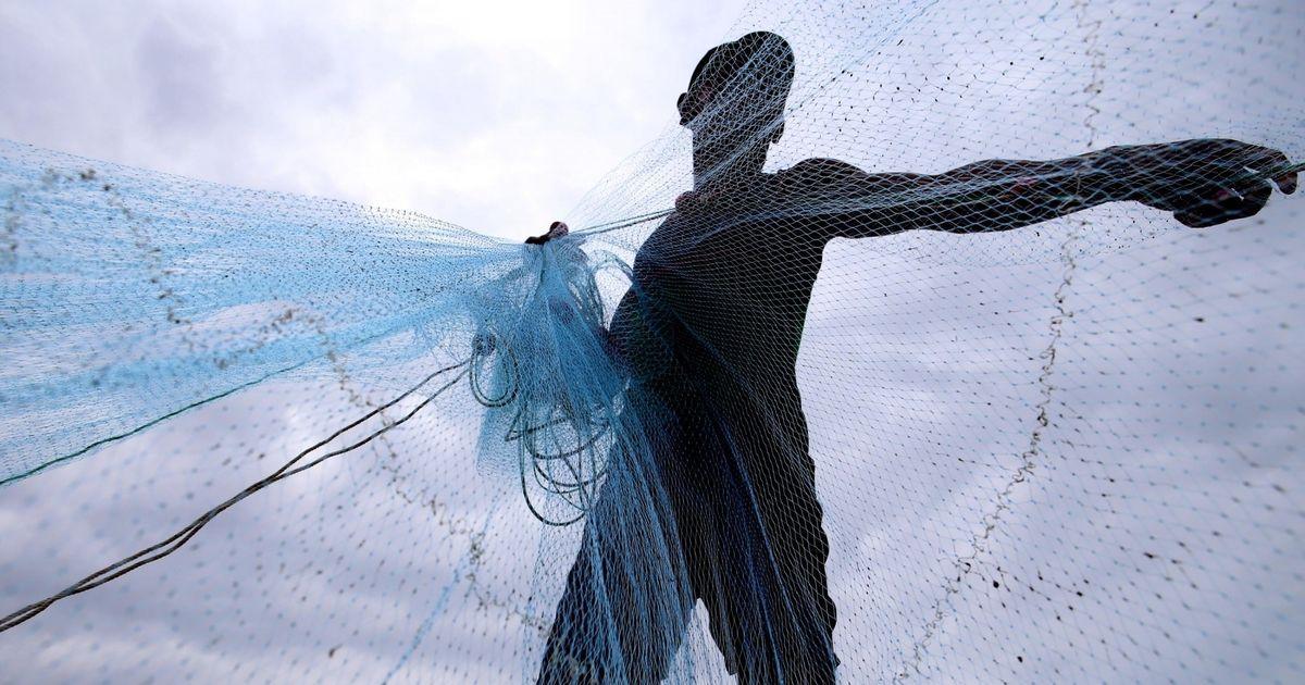 Tamil Nadu: Sri Lankan Navy denies shooting Indian fisherman dead, promises an investigation
