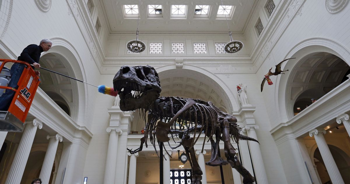 The T-rex and several other dinosaurs may have come from modern-day UK, suggests new research