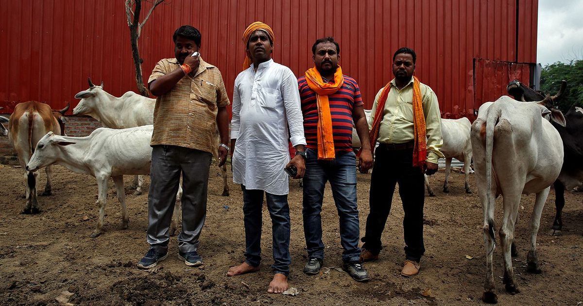 History teaches us why today's self-styled gau-rakshaks will harm the cattle-rearing economy