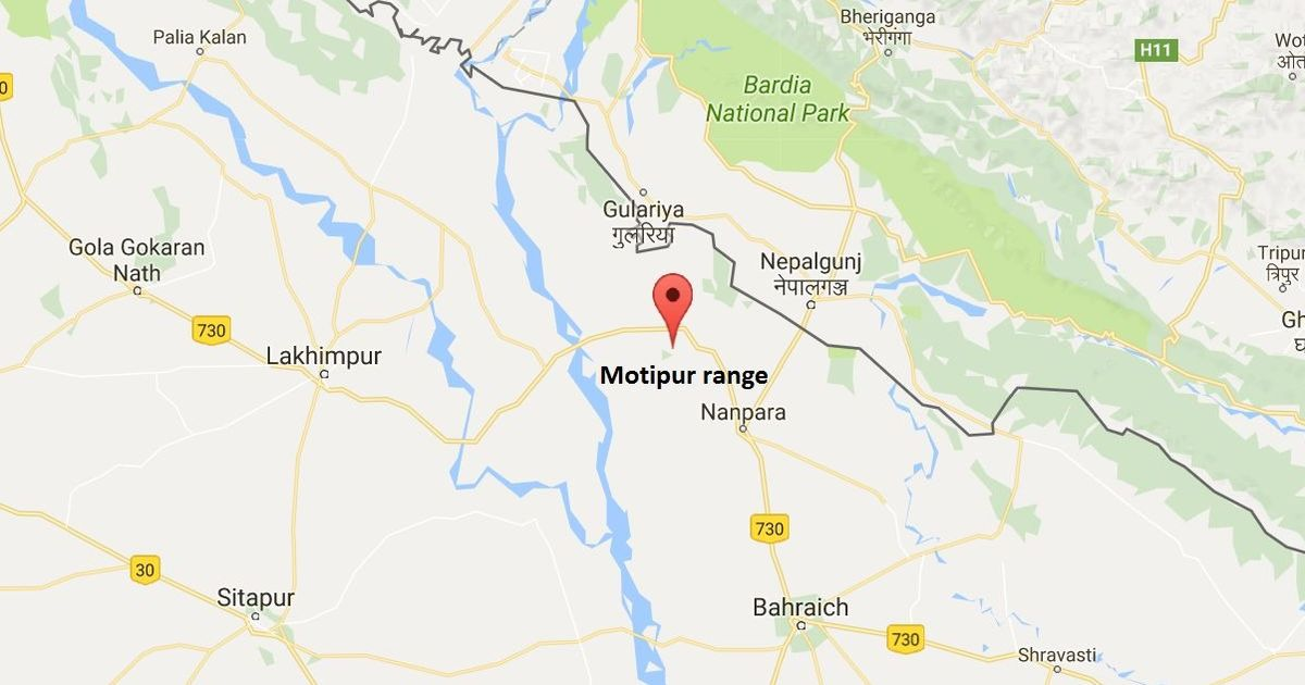 Uttar Pradesh: 8-year-old girl found living with a troop of monkeys in forest
