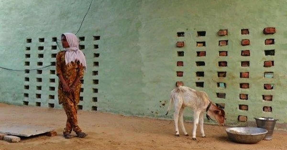 Car owned by member of Yogi Adityanath's Hindu Yuva Vahini allegedly runs over calf: Indian Express
