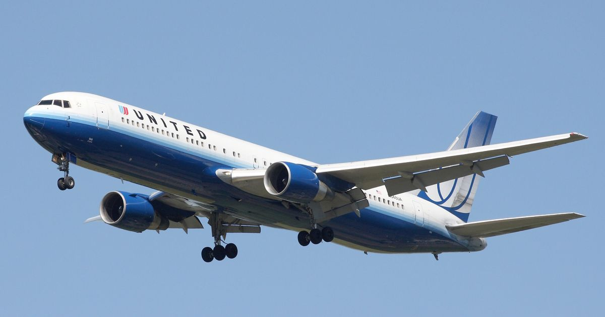 Man dragged out of flight to sue United Airlines, says his lawyer