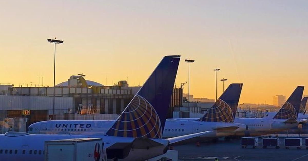 United Airlines flyer says he was stung by an onboard scorpion on the day of the passenger assault