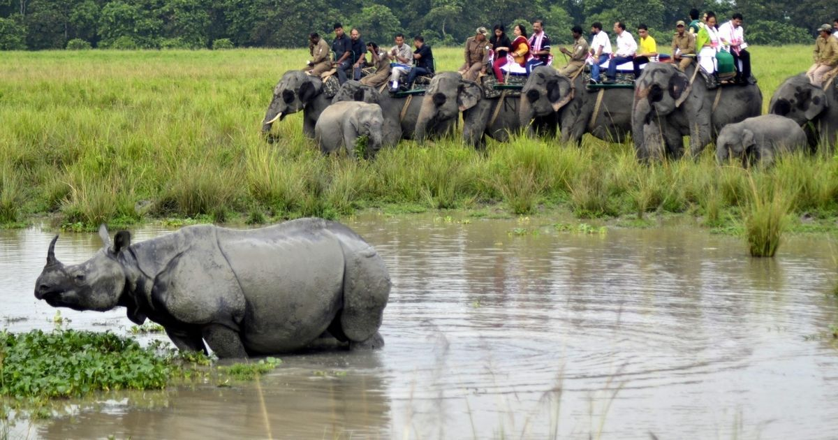 Five-year ban on BBC from India's national parks for its film on Kaziranga's anti-poaching policy