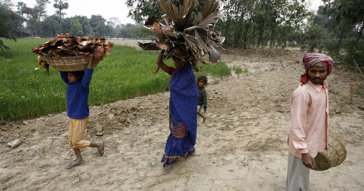In a Bihar district, an Anaj Bank has freed Dalit women from hunger and exploitation