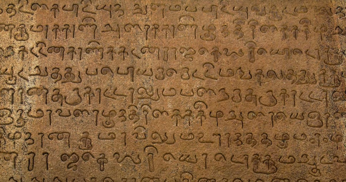 This meditative biography of Tamil is a breathtaking sweep over a linguistic landscape