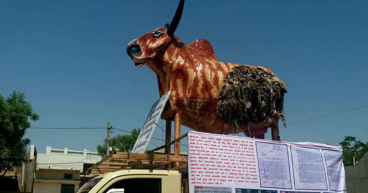 Metal cows and attacks: Ten months since the Una assault, cow politics still stalks Gujarat's Dalits