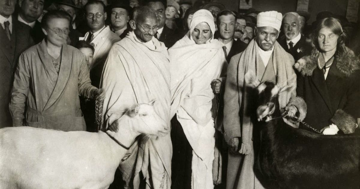 Why the story of Gandhi's nervous breakdown in 1918 (and goat milk) is relevant for today's India