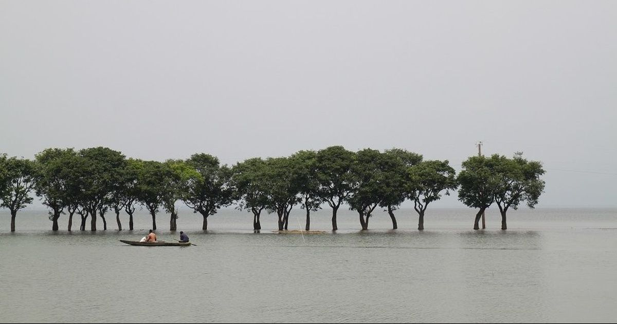 Rain in Meghalaya is flooding Bangladesh's wetlands. India must help its neighbour fix this