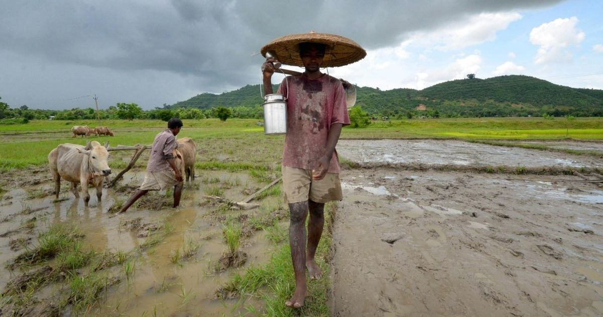 A farm crisis is slowly brewing in Assam – and farmers are staging protests to draw attention to it