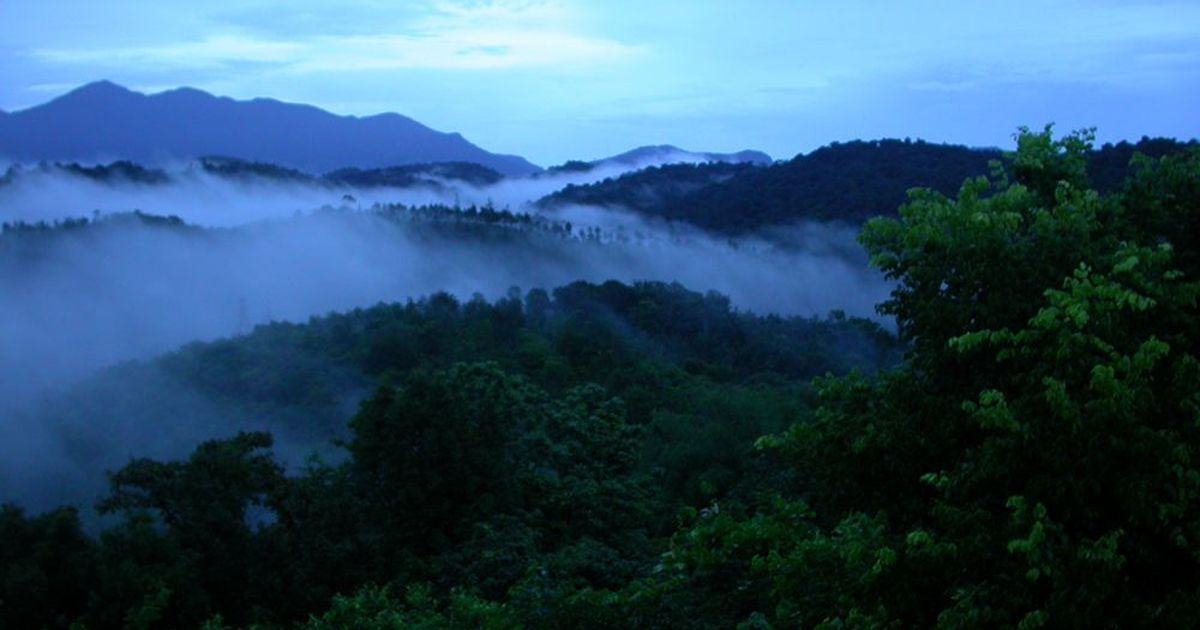 Song of the rain: On the monsoon trail in the Western Ghats