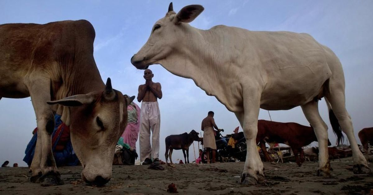 Jharkhand: Hundreds beat up Muslim man, set his house on fire after finding a dead cow outside it