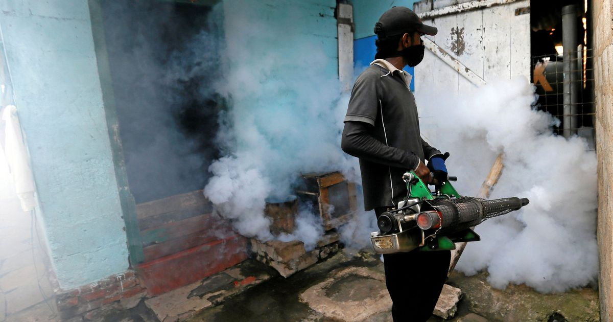 Sri Lanka's worst-ever dengue outbreak has left 225 people dead this year