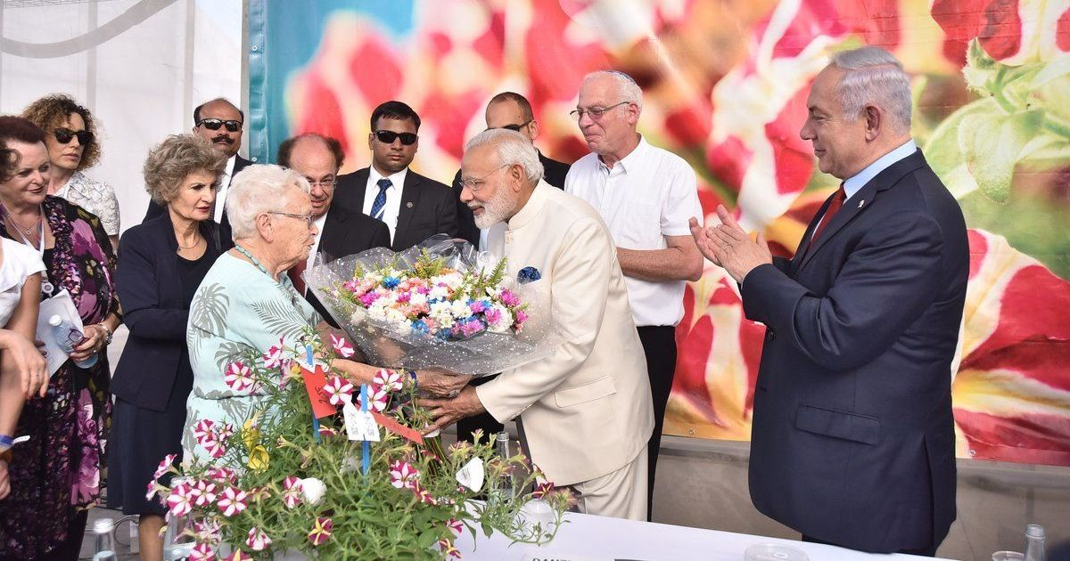 Best buds: An Israeli chrysanthemum has been named 'Modi' in the Indian prime minister's honour