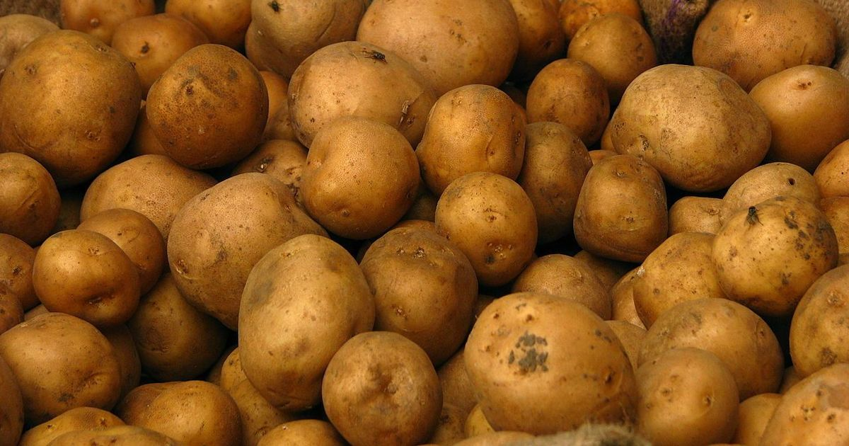 How the humble potato fuelled the rise of liberal capitalism