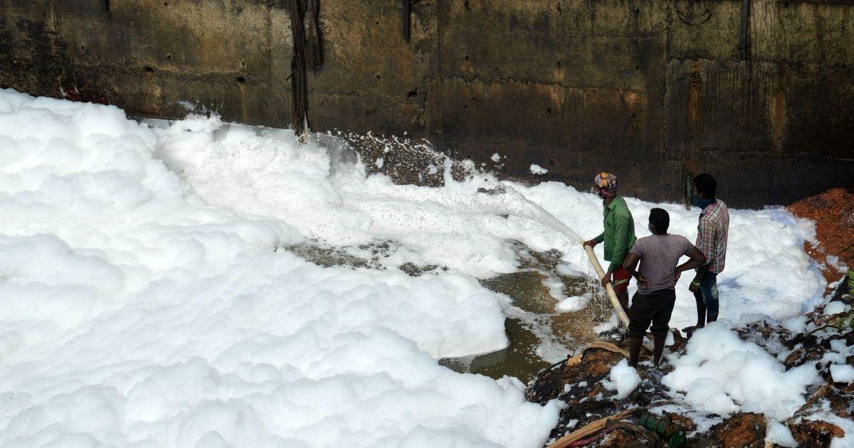 NGT asks Karnataka government to submit action plan to clean Bellandur Lake in Bengaluru