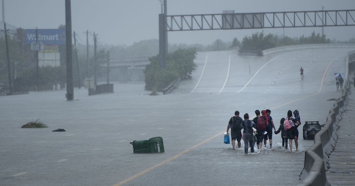 Hurricane Harvey: 200 Indian students marooned in Houston reported safe