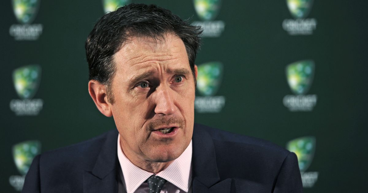 Cricket Australia among 15 sporting organisations to sign open letter supporting same-sex marriage