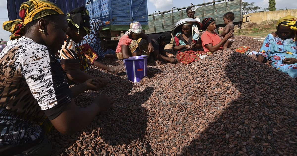 Your chocolate bar may be fuelling deforestation in West Africa