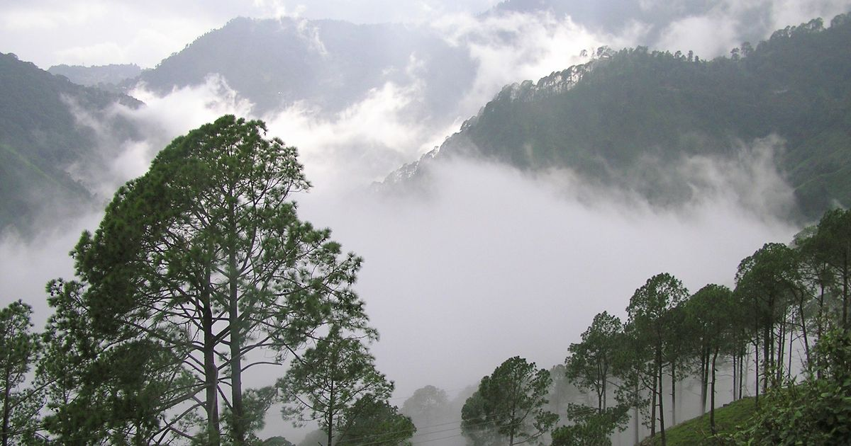 When a 13-year-old Jim Corbett uncovered a gruesome murder mystery in the hills of Nainital
