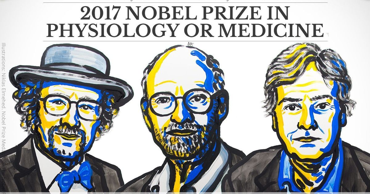 American trio get Nobel Prize for Medicine for their research on biological rhythm