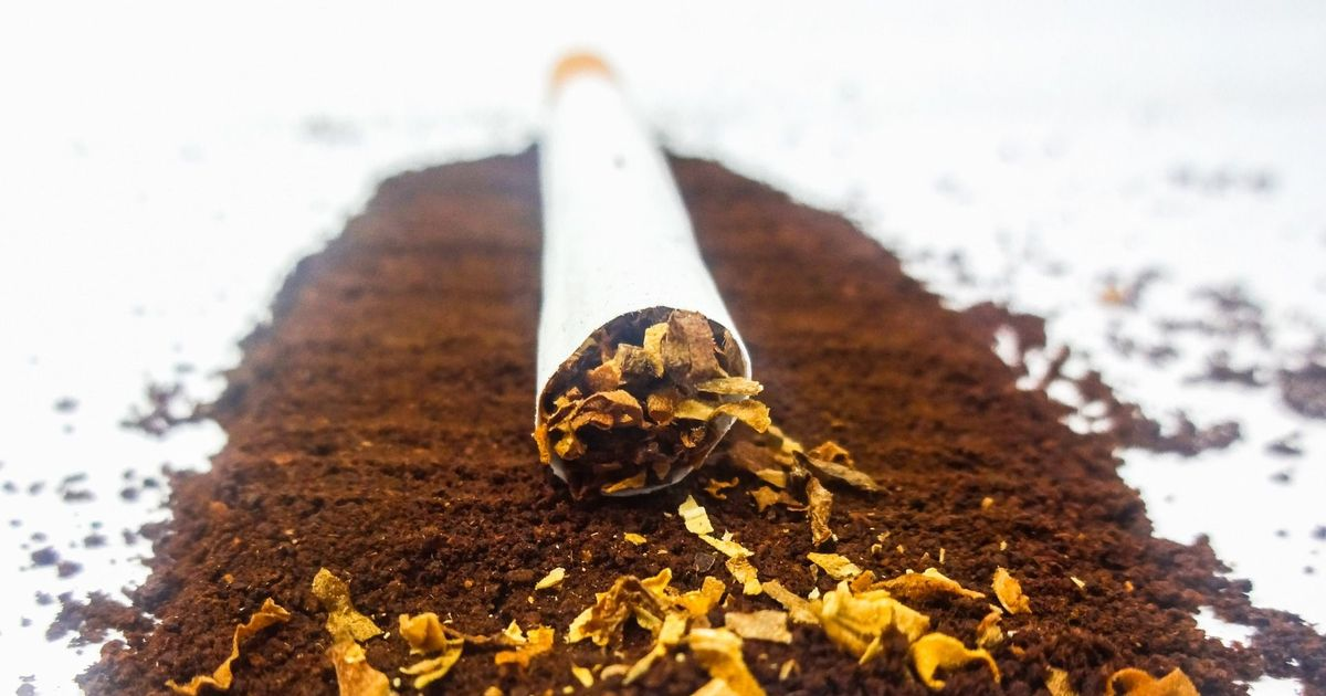 UAE introduces 'sin taxes' on tobacco, energy drinks