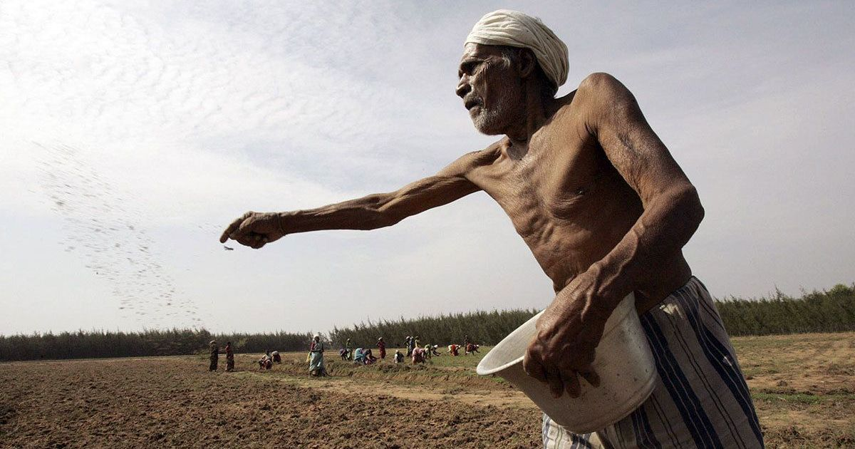 Maharashtra begins process to waive farmers' loans, releases Rs 4,000 crore