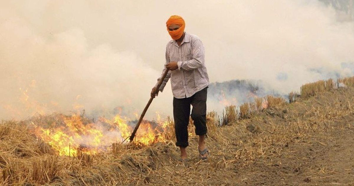Haryana pulls up 1,011 farmers for stubble burning, receives Rs 11.89 lakh in fine