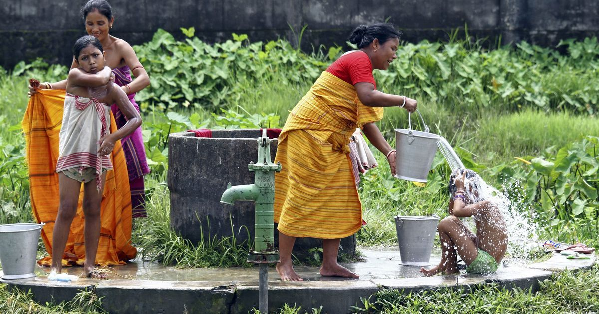 From bathroom services to tree protection, micro businesses in rural areas need new ideas