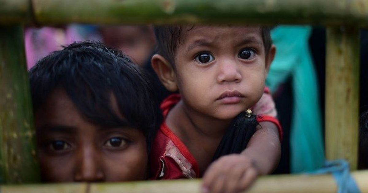 Myanmar: UN says 'elements of genocide' against Rohingya Muslims cannot be ruled out