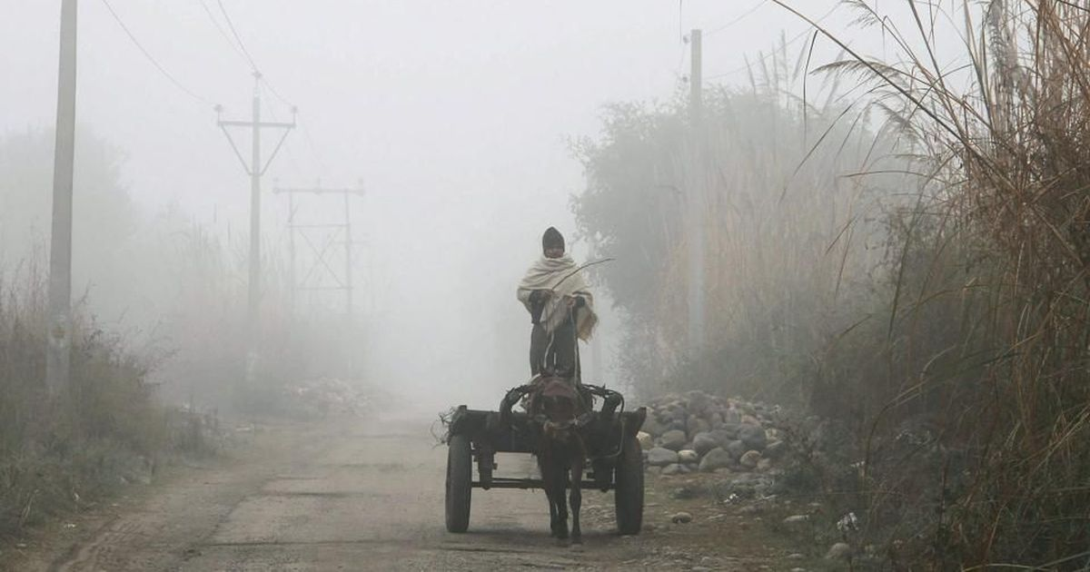 Cold wave continues to grip North India, temperature drops to season's lowest in Jammu city