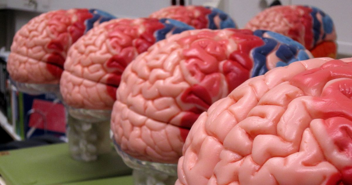 Lab notes: A diabetes drug that can treat Alzheimer's