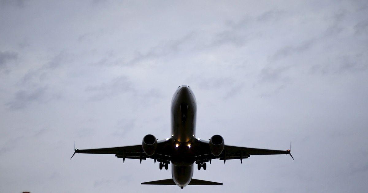 Gujarat: Cow enters Ahmedabad runway, temporarily disrupts flight operations