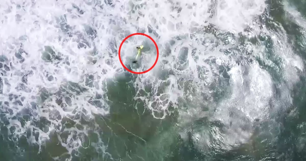 Watch: In a first, drone rescues swimmers off Australia beach