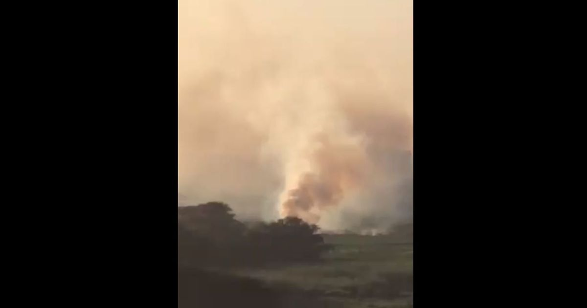 Bengaluru: Bellandur lake catches fire for the second time in two weeks