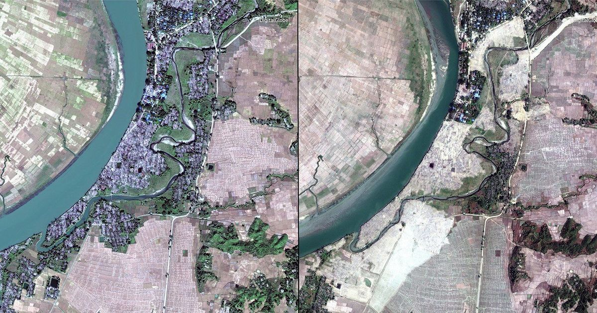 Myanmar government has razed dozens of Rohingya villages, satellite images show: AP