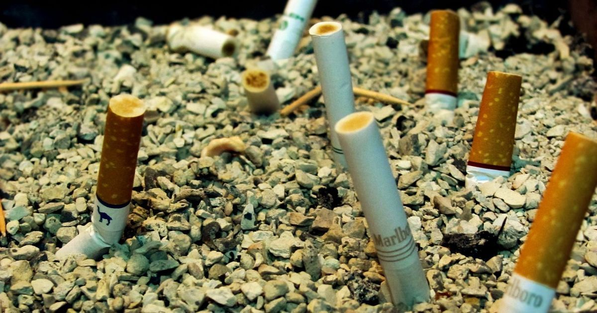 Big Tobacco is funding the anti-smoking lobby. Here's why.