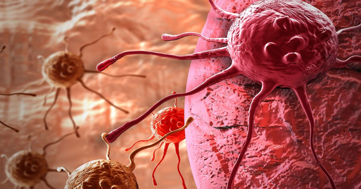 Cancer not only mutates but evolves other mechanisms to beat drugs