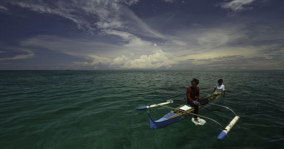 Are humans still evolving? What the case of free-diving Bajau Laut people tells us