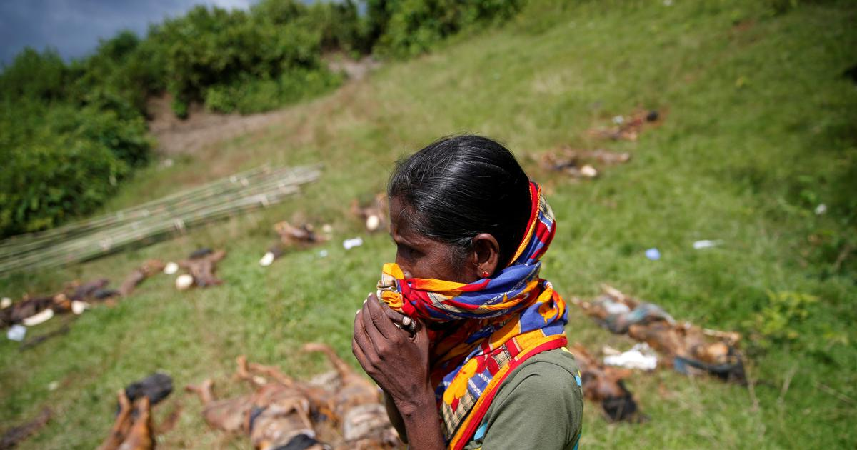 Rohingya militants massacred nearly 100 Hindus in Myanmar in August 2017, finds Amnesty
