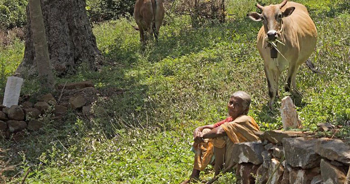 Women's role in conserving biodiversity is neglected worldwide. Here's how India can change that