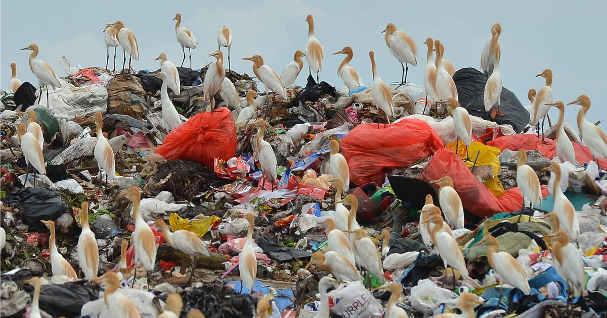 To encourage recycling of plastic, we need to change the way we value the material