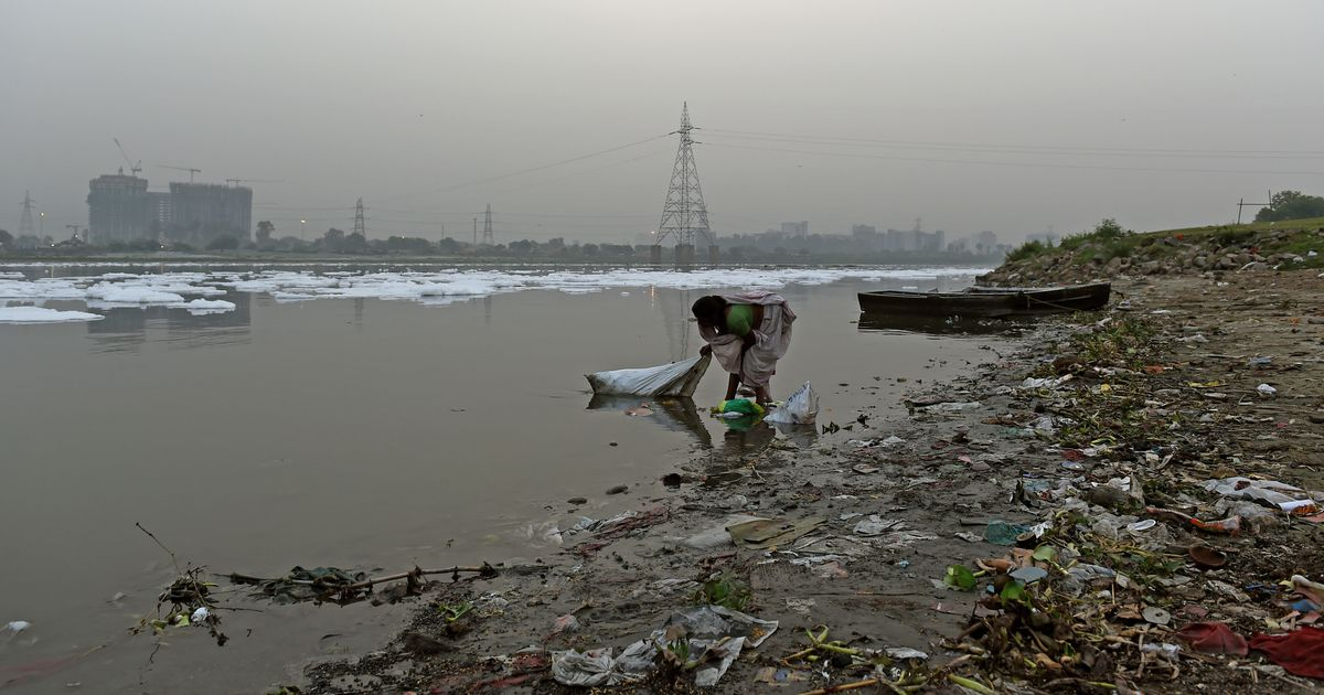Yamuna: NGT criticises Delhi government, says no 'meaningful progress' made in cleaning the river