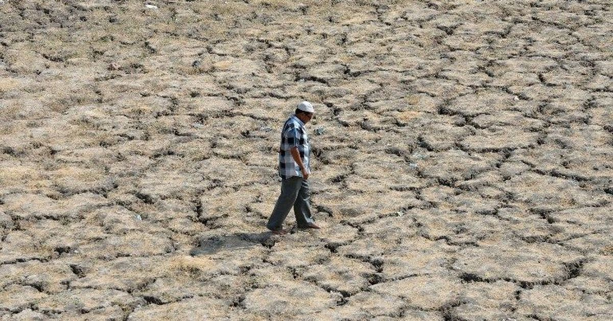 More than 60% of the districts in India cannot withstand drought, shows study