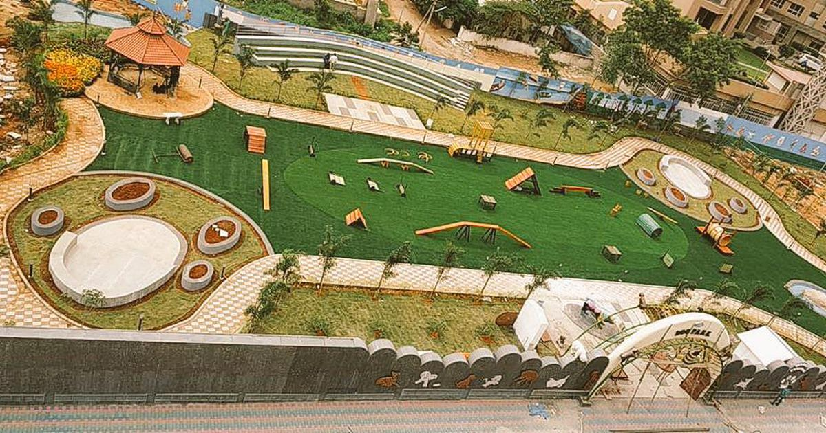 Hyderabad to get an exclusive dog park soon
