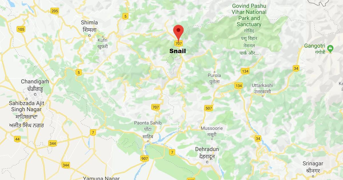 Himachal Pradesh: 13 people die after vehicle falls into gorge in Shimla district