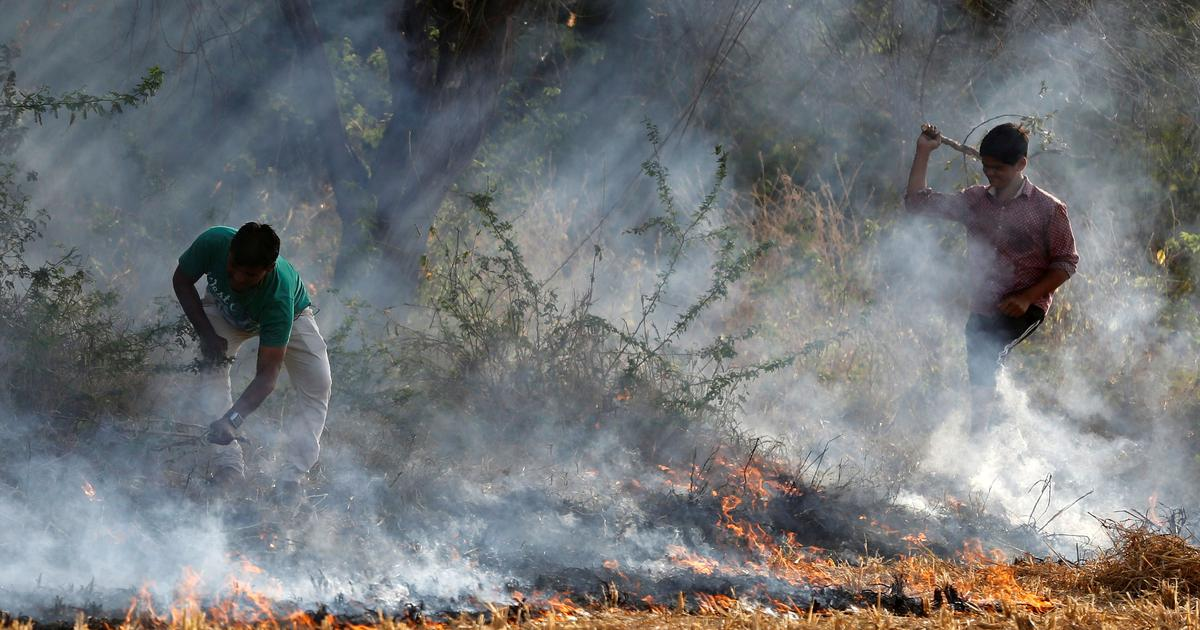 Centre asks northern states to give farmers equipment to curb stubble burning within 10 days