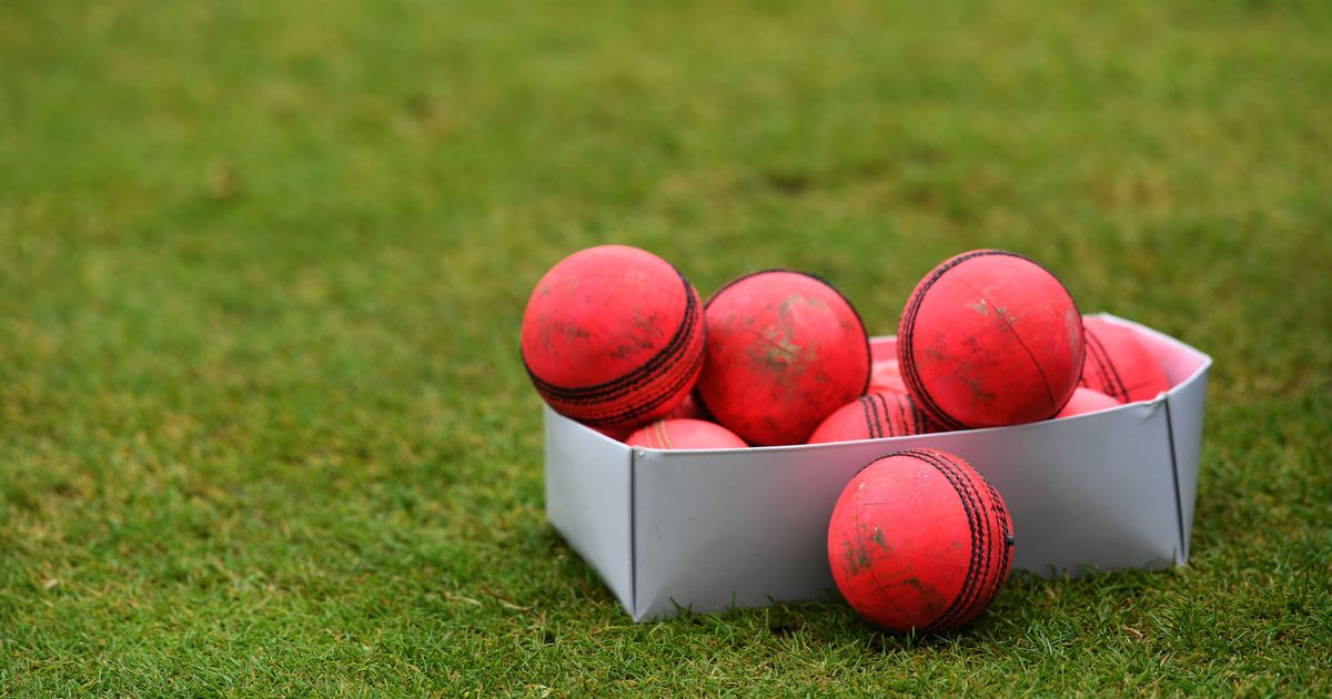 BCCI worried about supply of pink balls ahead of potential day/night India-Bangladesh Test: Report